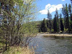 Yaak Riverfront Land for sale in Northwest Montana