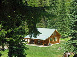 Almost 30 Acres with Log Cabin for Sale