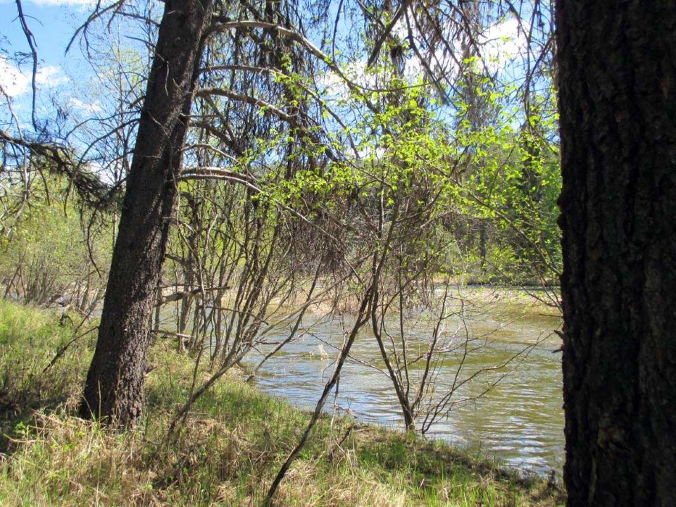 1.21 Acres Yaak Riverfront Land for Sale