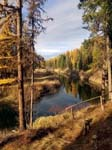 Amazing views of the Yaak River at this 1 Bedroom Cabin for Sale in Yaak, Montana